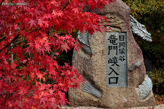 otono_japon.jpg