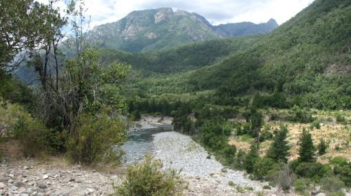 Abundancia en la naturaleza.Cajón del Achibueno.Chile.En peligro de desaparecer.